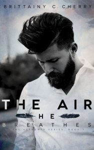 The air he breathes, brittainy C Cherry, Review, Hot guy, Books,
